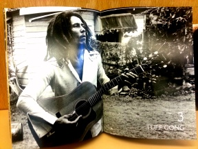 Inside of the book: Soul Rebel
